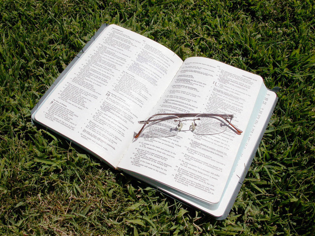 reading-on-the-grass-3-1554159-640x480